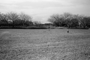 草原を走りまわる